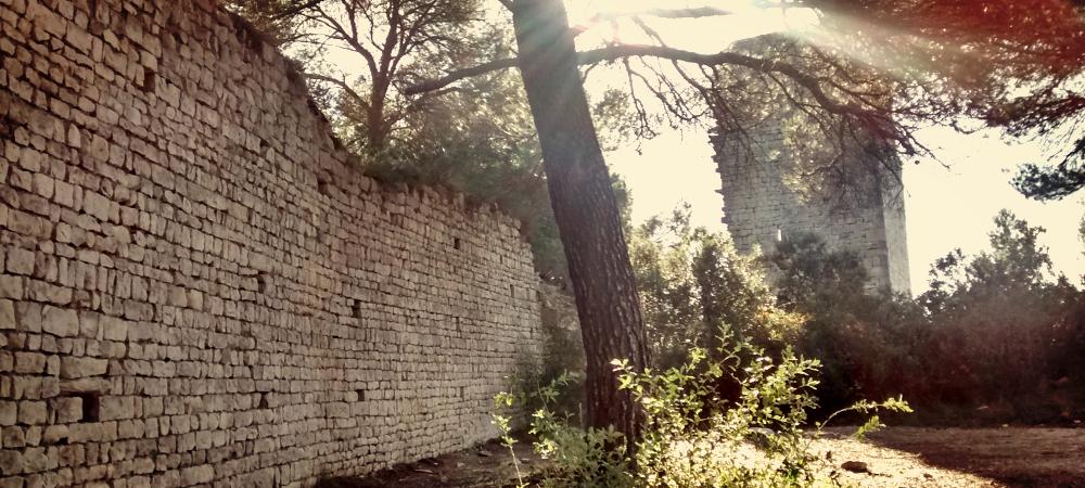 Séguret Vaucluse Provence