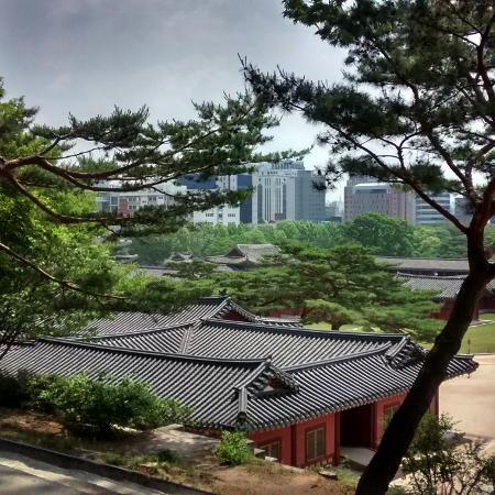 Envolez-vous pour la Corée du Sud