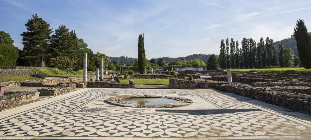 saint romain en gal archéologie