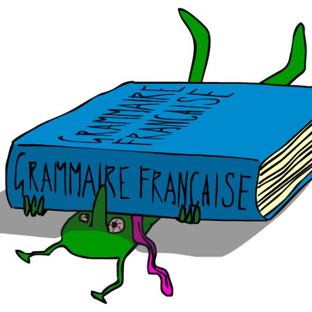 Frantastique orthographe : des cours de français en ligne
