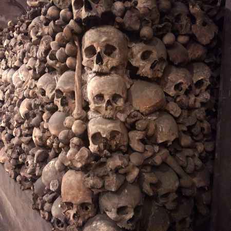 Ossuaire des Brotteaux, un témoignage de la Révolution à Lyon